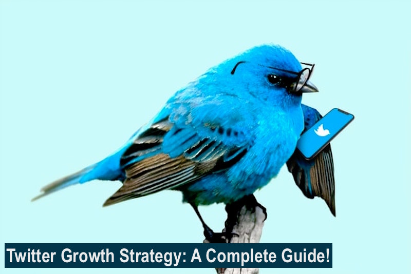 Twitter Growth Strategy
